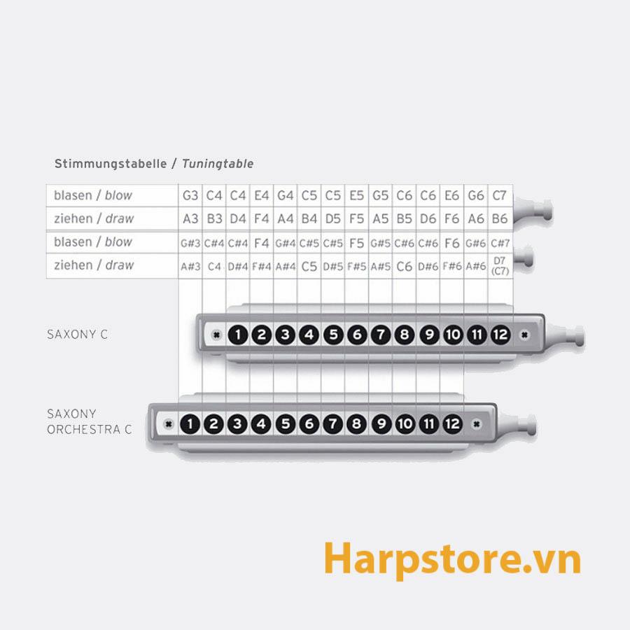 ken-harmonica-chromatic-seydel-saxony-2