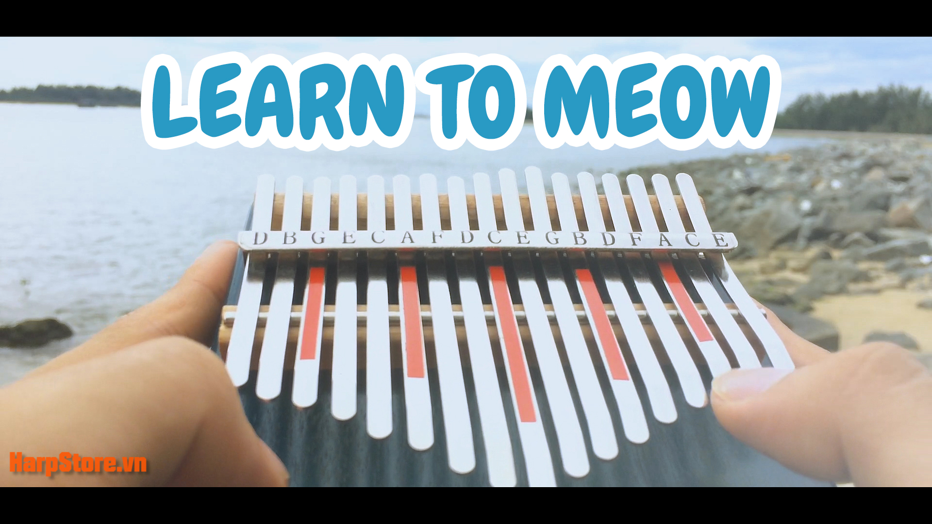 LEARN TO MEOW THUMBNAILS
