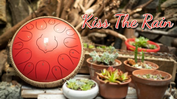 Kiss the rain tank drum cover